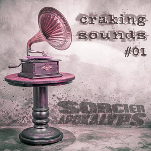 Wesh Conexion - Craking Sounds 01 (by Sorcier Apokalyps)
