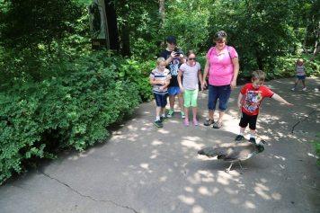 St Louis Zoo-3011
