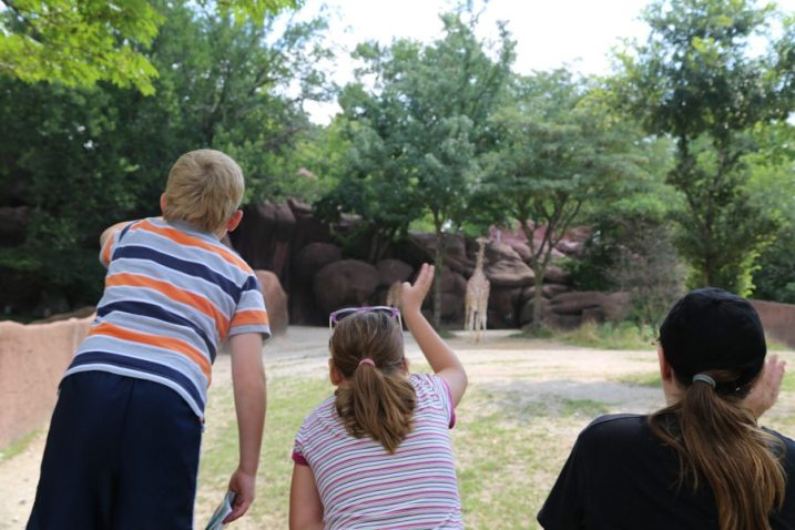 St Louis Zoo-3030