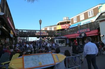San Fran Pier 39-7168