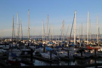 San Fran Pier 39-7171