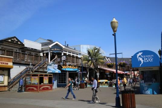 San Fran Pier 39-8037