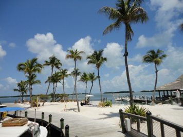 Key West11--6