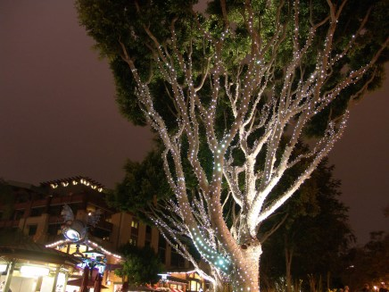 Downtown Disney-6