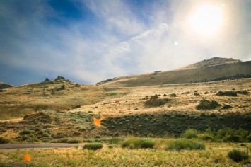 Antelope Island-0568