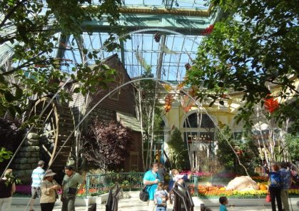 Bellagio Conservatory-05407
