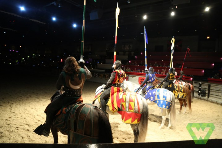 Medieval Times-7377