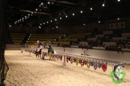 Medieval Times-7389