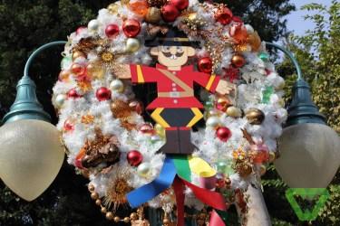 Disneyland Christmas