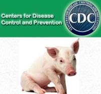 cdc-swine-flu-us