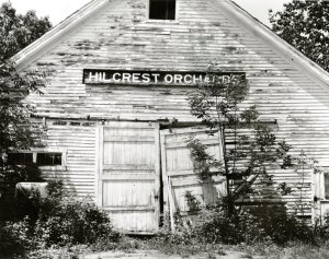 hillcrest-orchards