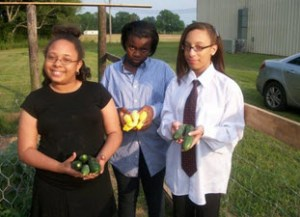 Youth are learning gardening skills and helping others