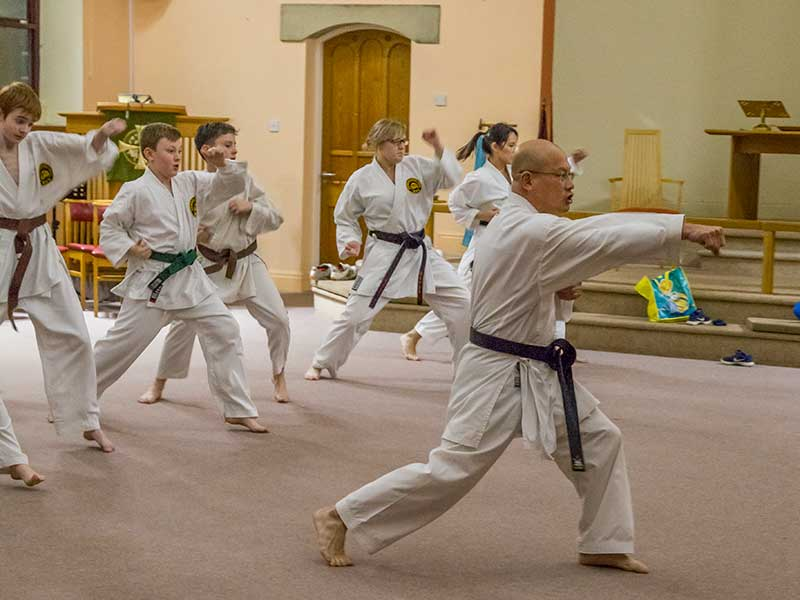 Seishin-Ryu Karate Club @Wesleys
