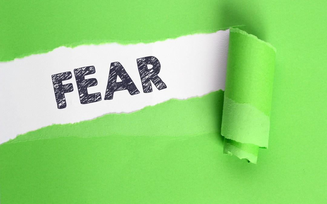 Fear Is A Factor