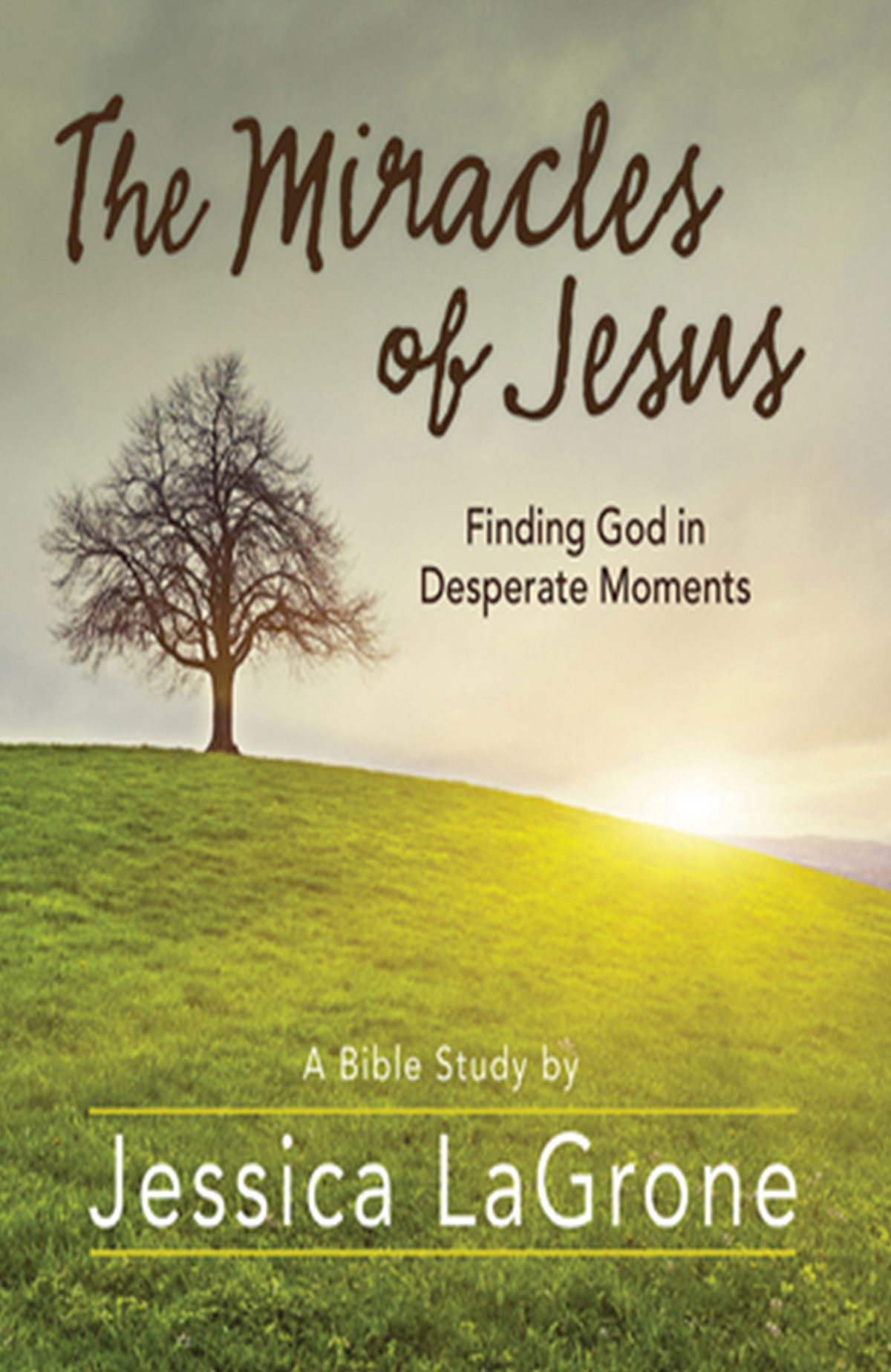 miricals of jesus book cover
