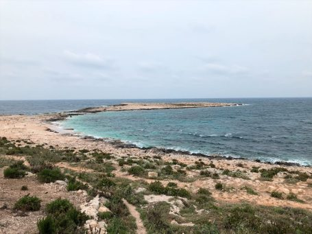Malta natura