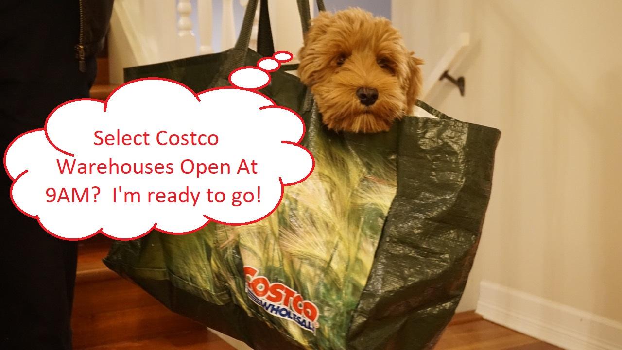 Costco West Sale Items for Jan 21, 2019 - Jan 27, 2019 for ... on Costco Furniture Showroom Kirkland Washington id=34089