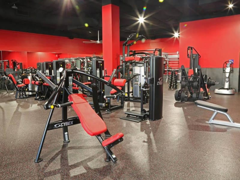 Shredz Gym Opens in Ladera Ranch