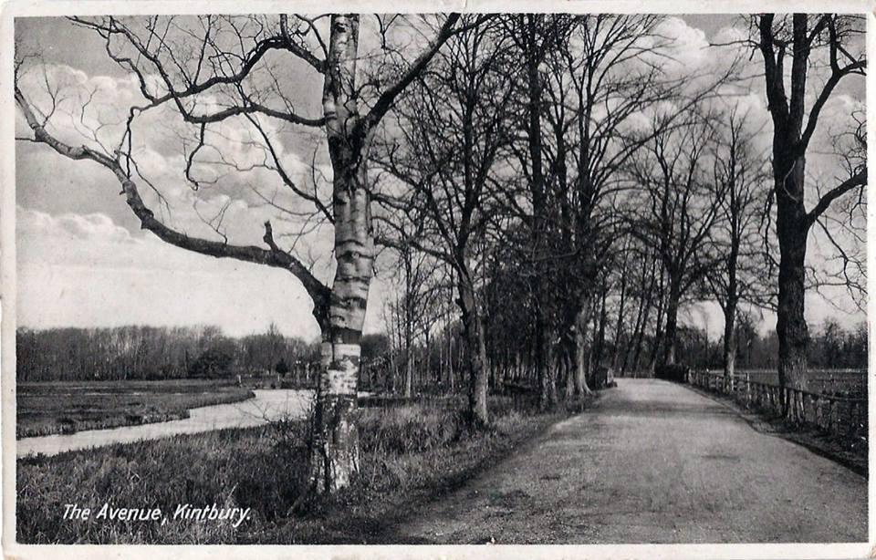 avenue-kintbury