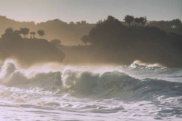 powerful wavy ocean washing picturesque coast with trees