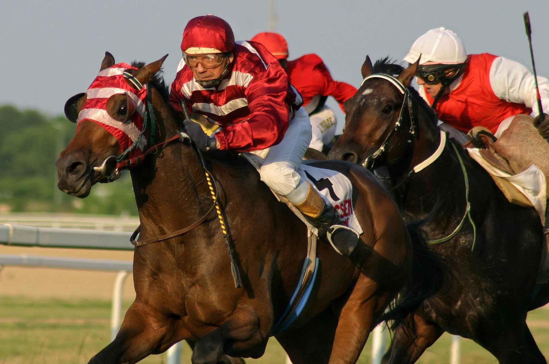 horse track magazine race