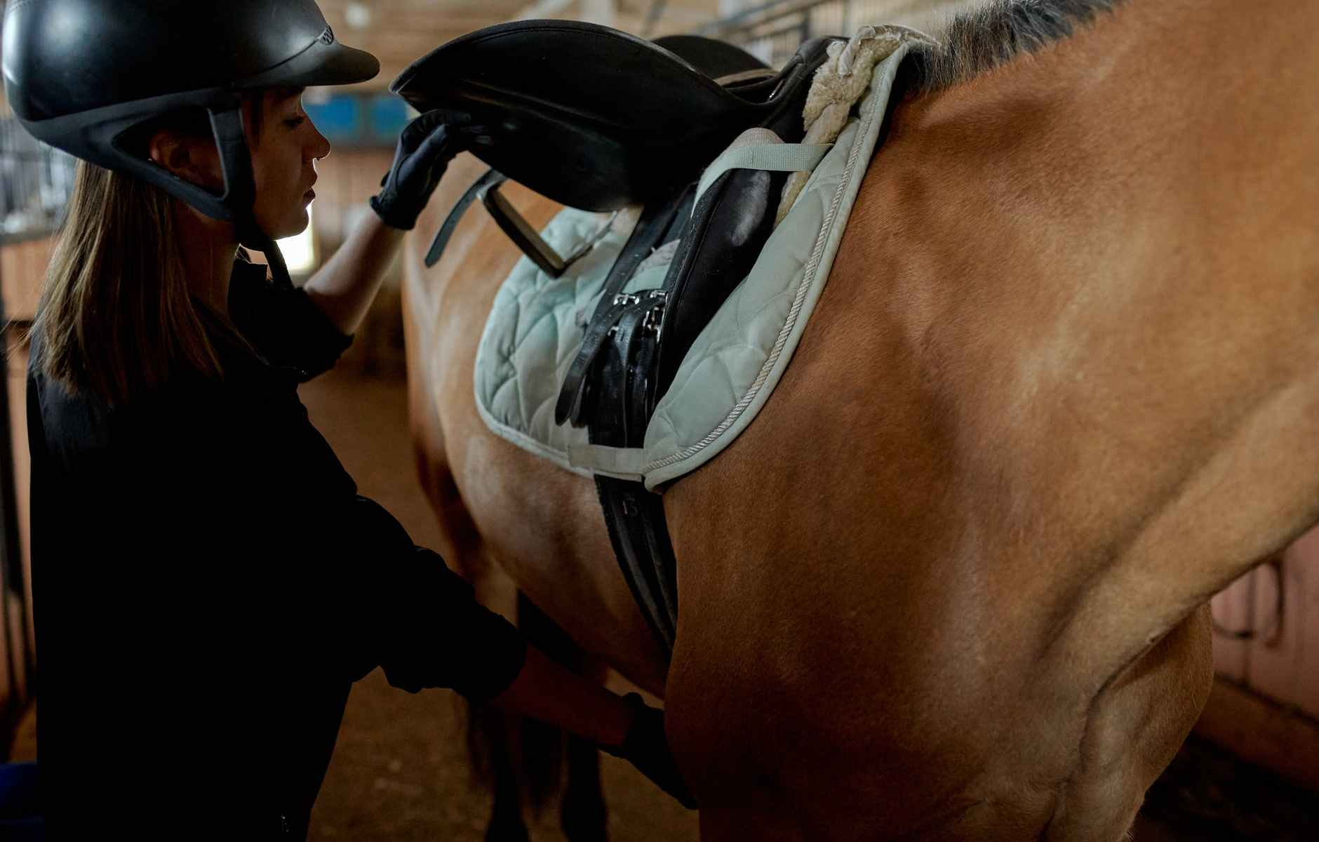 serious young woman preparing horse for riding