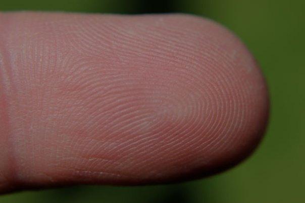 Fingerprint Sensor on Smartphone Is Not Safe | West