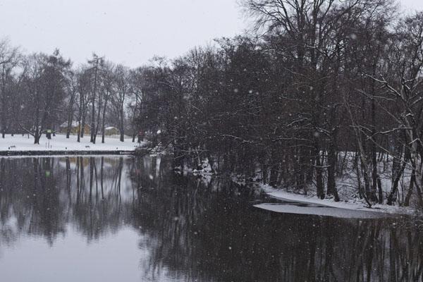 snowycanal