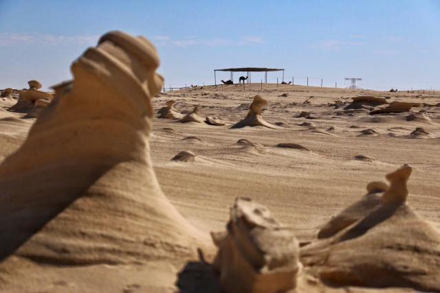 abu dhabi fossil dunes