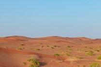 Sand Dunes, Al Ain, UAE