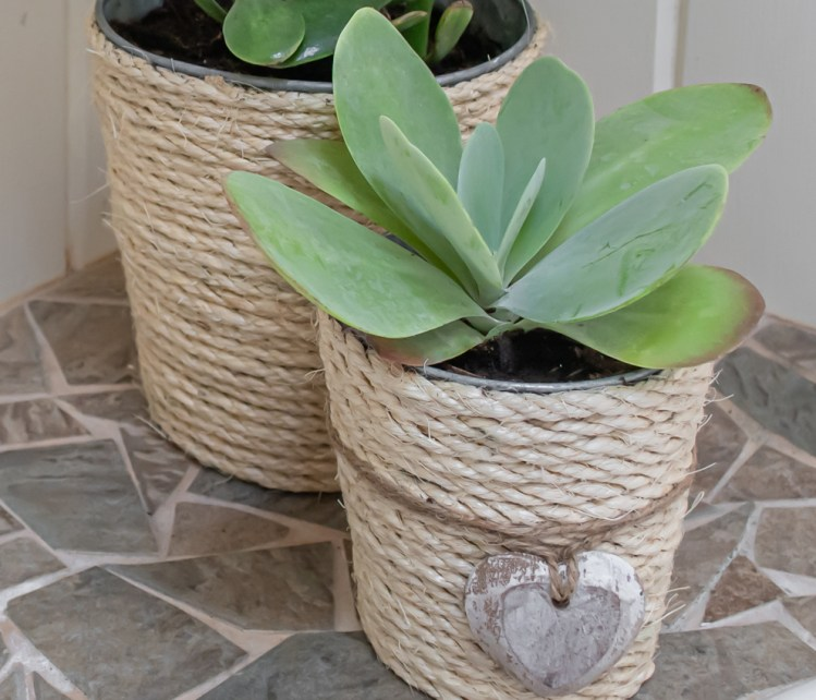 DIY rope wrapped planters craft project