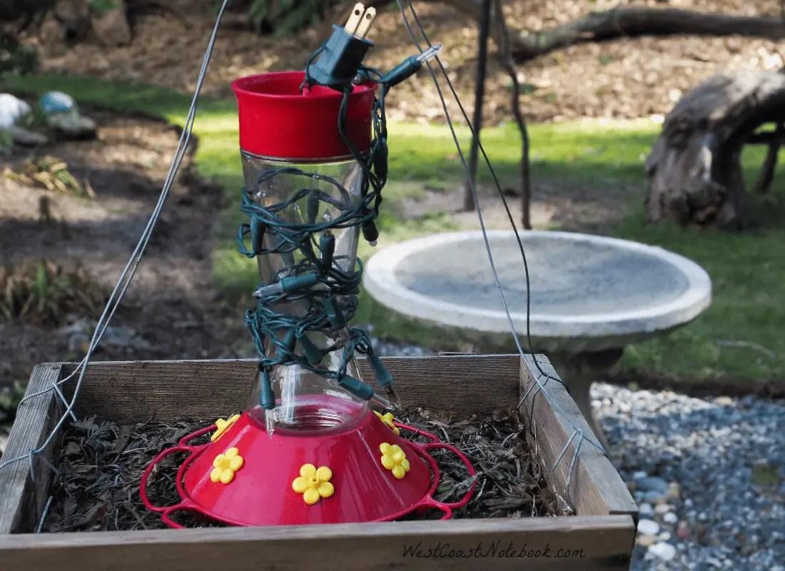 Glass Hummingbird feeder setup so it won't freeze