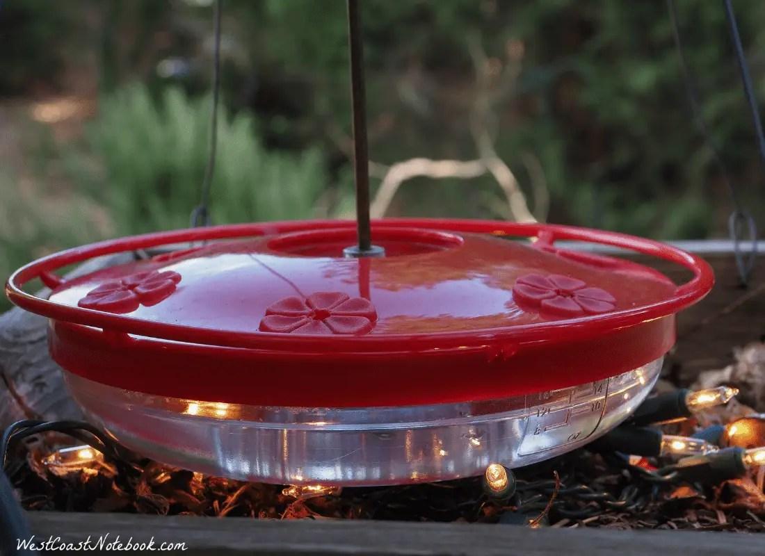 Hummingbird feeder set up so it won't freeze