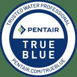 Pentair True Blue Professional