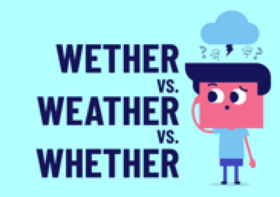 Overrialnce on spellcheck and grammar check lead to copywriting errors. Example: wether vs weather vs whether