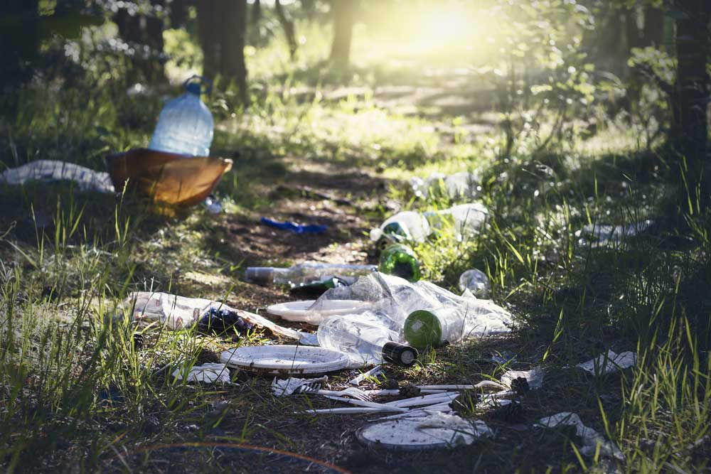 Litter on the ground demonstrating need for proper waste removal