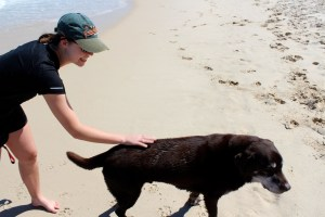 Claremont resident, Holly Eckerlsey, patting her Labrador after having a dip in the ocean.
