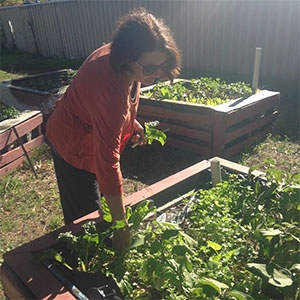 Diane Samson tending to the students veggie patches as part of their community component