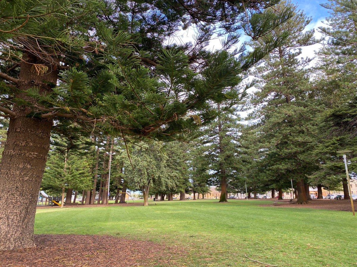 A photo of Esplanade Reserve, a park in the heart of Fremantle.