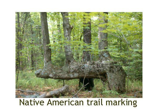 Trail mark
