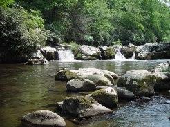 Hazel Creek 1