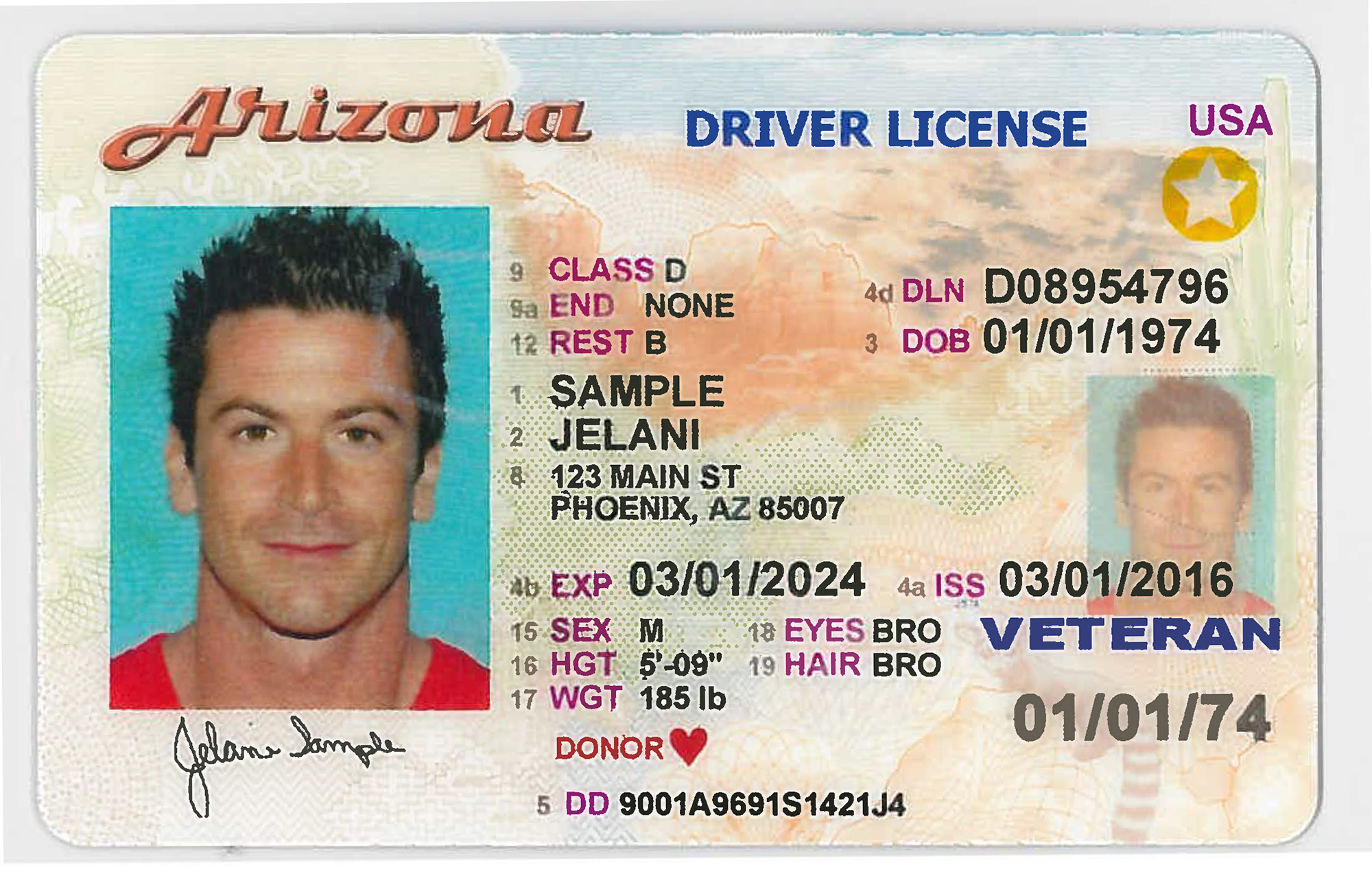State Driver Licenses Ids Valid For Air Travel Until