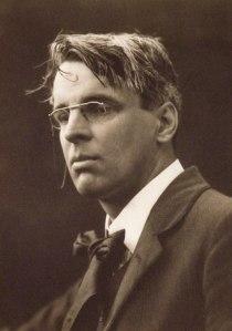 W B Yeats rose available from Western Plant Nursery Sligo