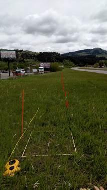 Experimental roadside vegetation testing plots to evaluate roadside vegetation management