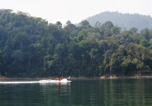 Boat with passengers travels through lake in Royal Belum State Park, Malaysia
