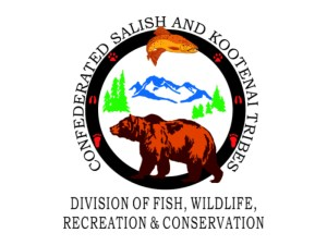 Logo Confederated Salish and Kootenai Tribes