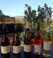 Dryridge Estate Wine selection