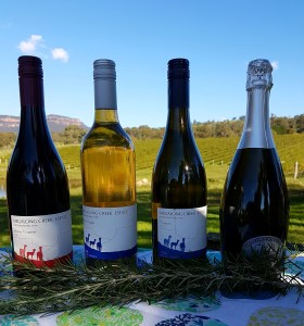 megalong creek winery and vinyard