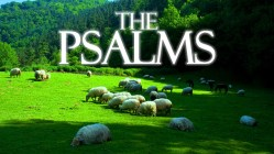The Psalms: God's Provision for the Journey