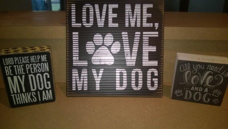 Dog love tampa